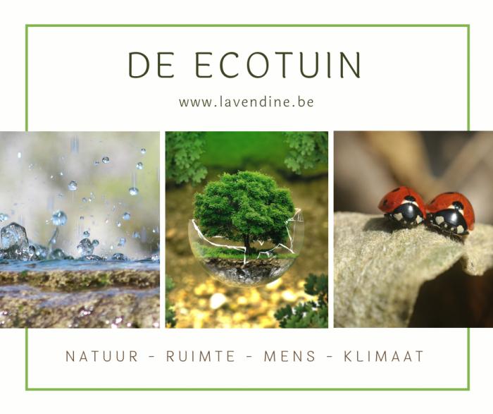 milieu ecologie tuin